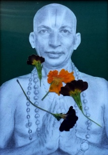 Tirumalai Krishnamacharya (November 18, 1888 – February 28, 1989), pencil, dried flowers on paper,artwork by Adisa